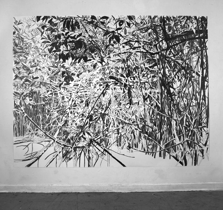 http://www.bettinaerzgraeber.de/files/gimgs/31_mangrovegrosswww.jpg