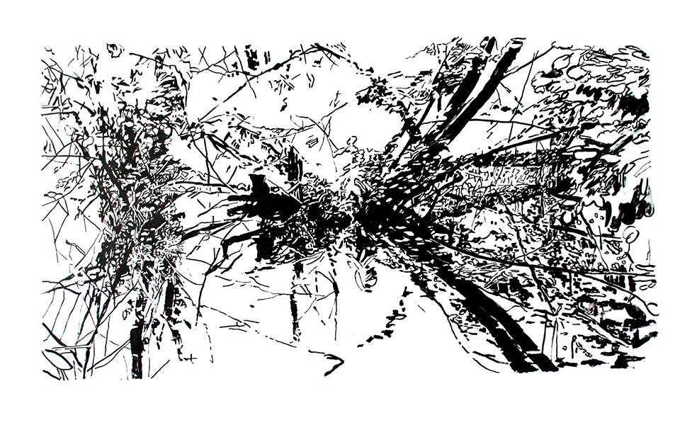 http://www.bettinaerzgraeber.de/files/gimgs/40_spiegelung02.jpg
