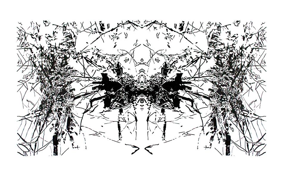 http://www.bettinaerzgraeber.de/files/gimgs/40_spiegelunglinks.jpg